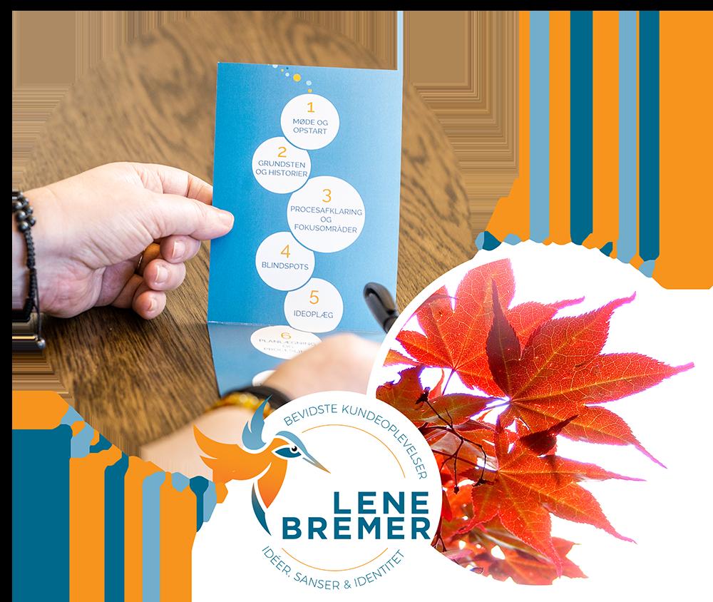 6 Skridt - Lene Bremer